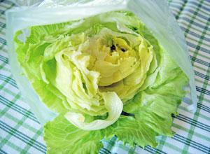 storing salad greens