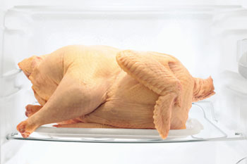 Thawing Turkey
