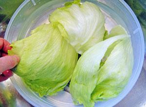washing salad greens