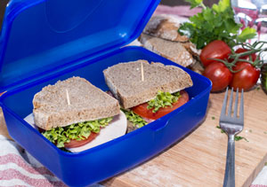 sandwich in a lunch box