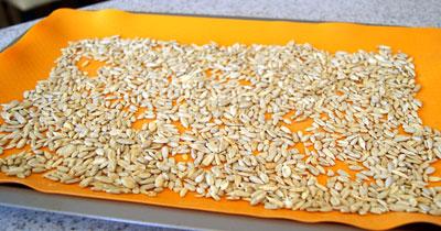 toasted seeds