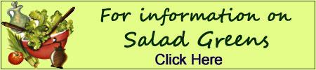 information on salad greens